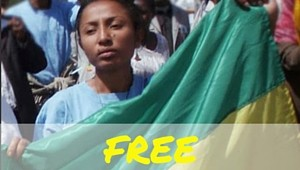 6 FREE Reeyot Alemu